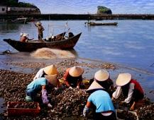 《夏日的港湾》 摄影:潘新田