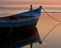 《海边的清晨》 摄影 :吴新华