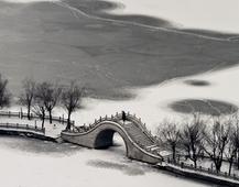 《最是雪后清致时》摄影: 朱德贵