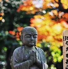 日本相亲花样多 寺庙相亲开启全新邂逅