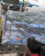 <b>中国红十字国际救援队赴菲</b>