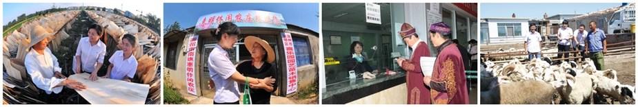 小额贷款帮助农户致富小额贷款帮助农户致富偏远地区网点为当地群众提供金融服务信贷员入户调查