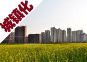 出台实施国家新型城镇化规划