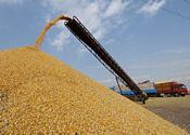 保障国家粮食安全