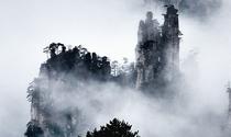 《张家界天子山》 摄影:郑月兴