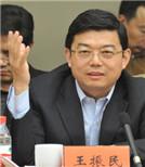 王振民:应该用网络 而不被网络利用
