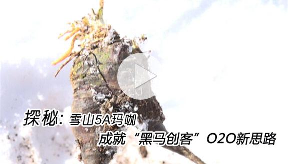"""探秘: 雪山5A玛咖成就""""黑马创客""""O2O新思路"""