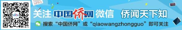 中國僑網微信公眾號入口
