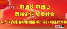 宗庆后2013年两会建议和议案