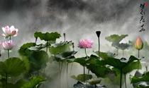 《荷塘梦幻》 摄影:黎为民