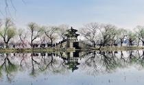 《西堤春晓》 摄影:王乃祥