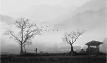 《山乡晨曲》 摄影:张有钢