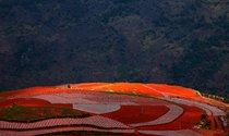 《红土地》  摄影:彭强