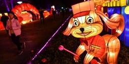 新加坡唐人街举办亮灯仪式 88只灵犬贺春