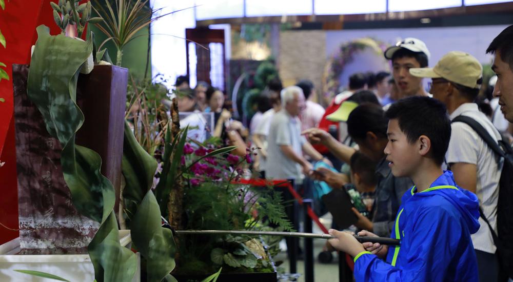 世界珍稀旗舰植物亮相世园会北京展区