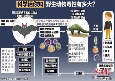 科学话你知:野生动物毒性有多大?