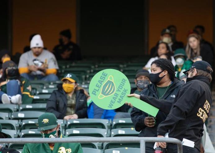 美国加州棒球观众重返体育场