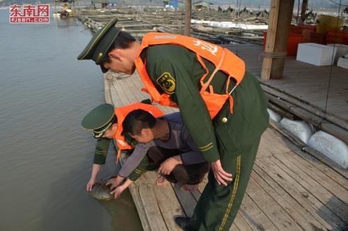 """渔民误捕国家二级保护动物""""中华鲎"""" 民警放生"""