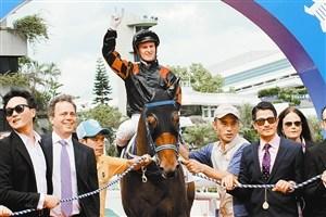 香港赛马详解:一匹良驹价格抵一个香港豪宅
