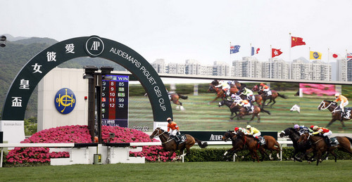 香港赛马会跑马地会所_一众国际顶级良驹在沙田马场角逐本年度\