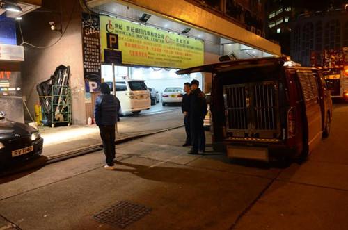 两南亚裔男子在港自制燃烧弹向马路投掷无人伤