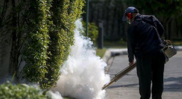 香港登革热再增3例 狮子山公园或是部分患者感染源
