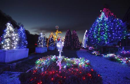 克罗地亚老人将挂逾百万彩灯迎接圣诞节(图)