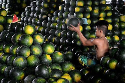 菲律宾人新年家中要摆12种圆水果西瓜变身福果