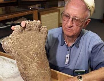 """牛津研究证明世界上并无""""大脚怪""""等异类存在"""
