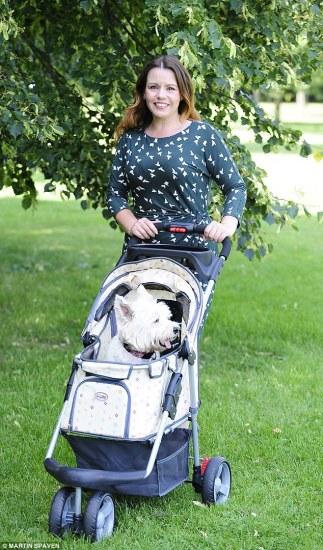 """女子用婴儿车遛狗称可体验""""做母亲""""感觉(图)"""