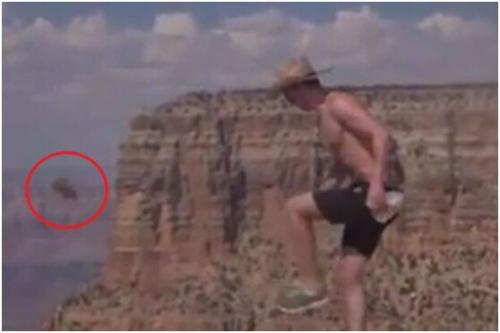 美一男子引诱小松鼠并残忍将其踢下悬崖(图)