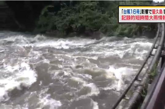 16号台风逼近日本带来强降雨 果农抢收苹果(图)