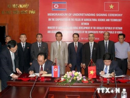 越南和朝鲜签署空运协议 满足两国往来需求