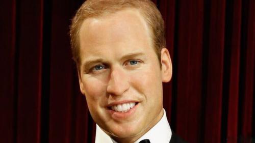 日媒误用英国王子蜡像照当真人照做新闻配图