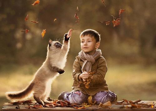 俄罗斯妈妈用镜头记录孩子和动物相处瞬间(图)