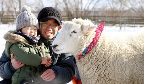 """喜迎羊年 日本举行与""""微笑羊""""合影活动(图)"""