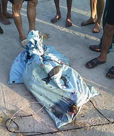 越南村民乱棍暴打偷狗贼 两小偷被打死(图)