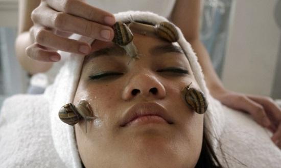 """""""蜗牛美容"""":泰研究员称泰国蜗牛美容效果最好"""