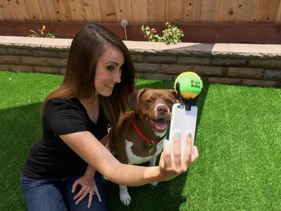 自拍神器:手机上架只网球 能让狗狗乖乖看镜头