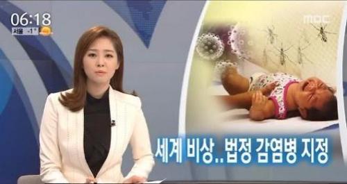 """韩国将""""寨卡热""""列为第四类法定传染病 加强防控"""