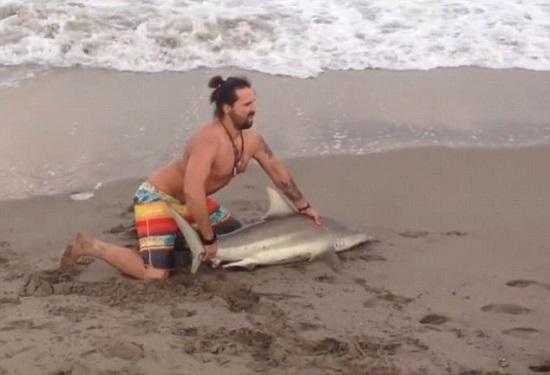 """美国男子将搁浅鲨鱼拖上岸拍照网友斥""""残忍"""""""