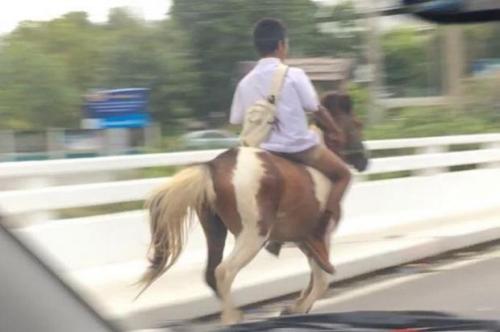 2016最牛座驾?泰国小男生骑立雕刻学弹奏风炫酷