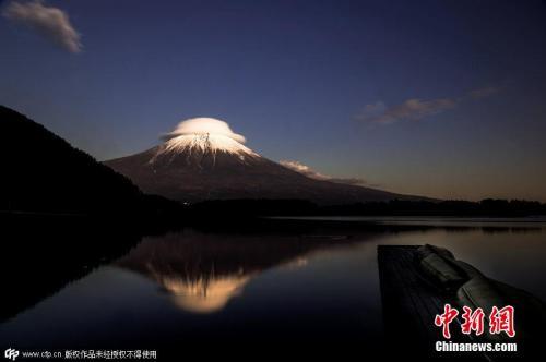6万株油菜花与雪白富士山争艳游客享受佳期美景