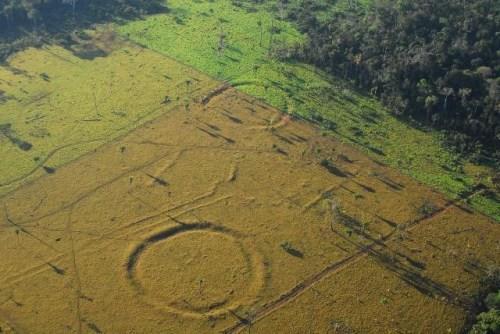"""巴西雨林巨型图案如""""巨石阵""""逾2000年历史(图)"""