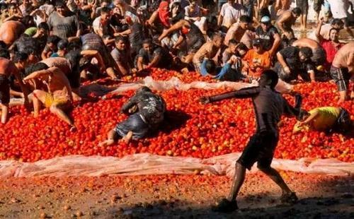 智利上演番茄大战狂欢民众红色海洋里乐翻天(图)