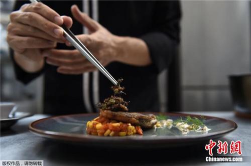 舌尖上的另类美食:泰国高档餐厅以各类昆虫入馔(图)