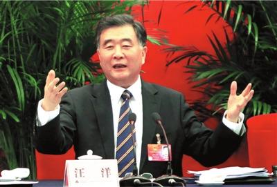 汪洋谈政治体制改革:政府放权需法律突破(图)