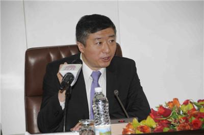 中国驻也门大使的76天:没来得及递交国书