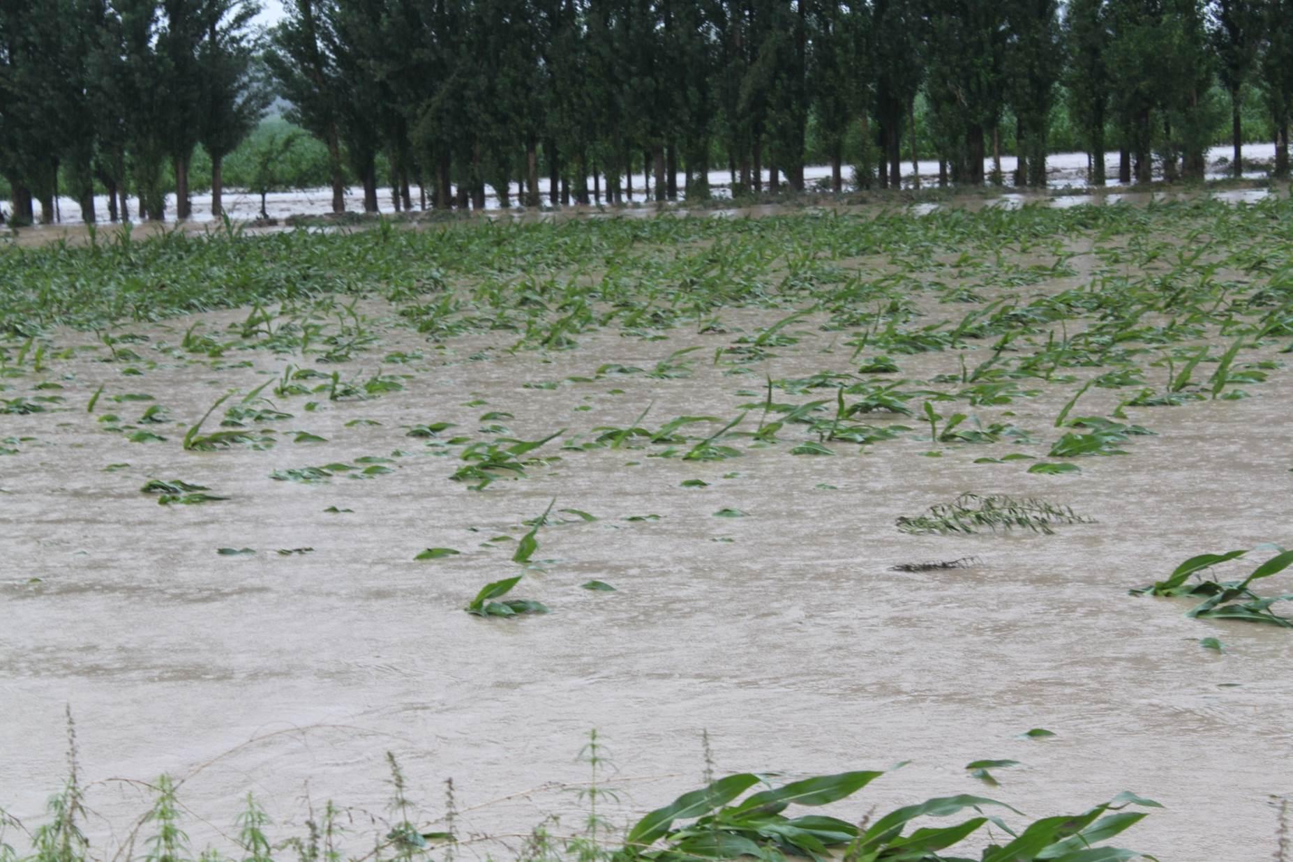 新疆洪涝灾害致9.9万人受灾1500余间房屋倒塌