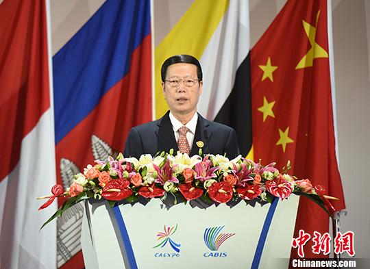 第13届中国―东盟博览会开幕张高丽提扩大共识合作六点建议